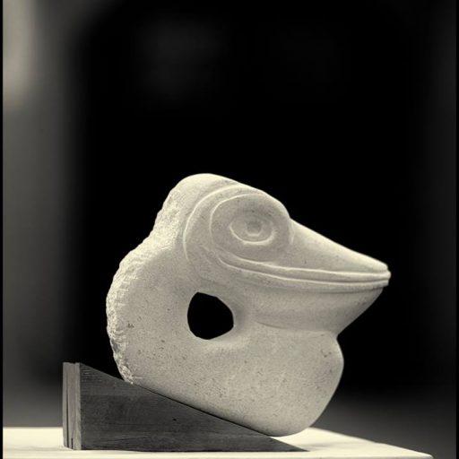 cropped-pelican3.jpg